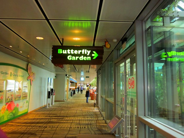 Аэропорт Чанги (Changi) в Сингапуре, сад бабочек