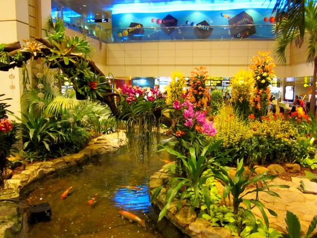 Аэропорт Чанги (Changi) в Сингапуре, сад орхидей
