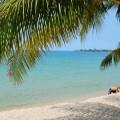 beaches-preview