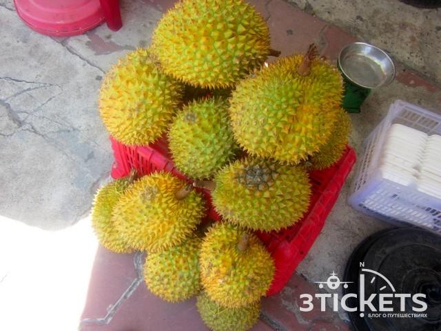 Тропические фрукты Азии: Топ-10 тропических фруктов Азии: дуриан