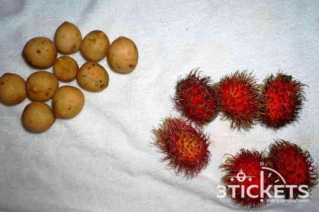 Тропические фрукты Азии: Топ-10 тропических фруктов Азии: рамбутан
