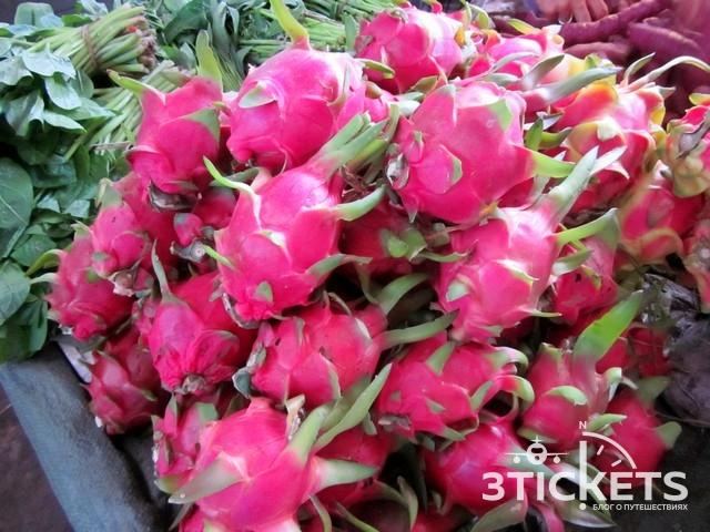 Тропические фрукты Азии: Топ-10 тропических фруктов Азии: драгонфрут