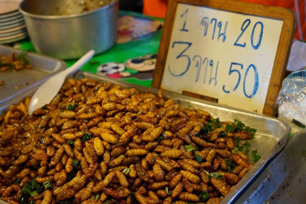 Личинки шелкопряда в Таиланде