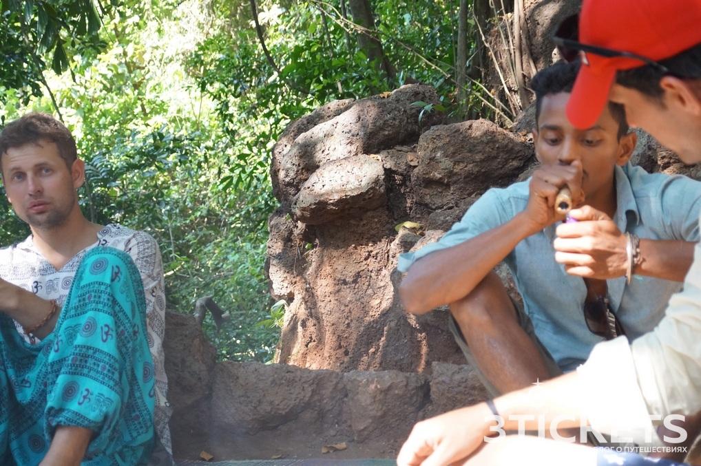 Баба под большим баньяном в Арамболе: мудрость и наркотики