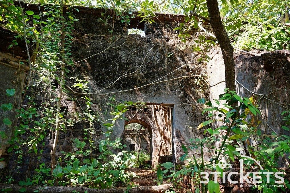 Лучшие достопримечательности Северного Гоа: фото и описание