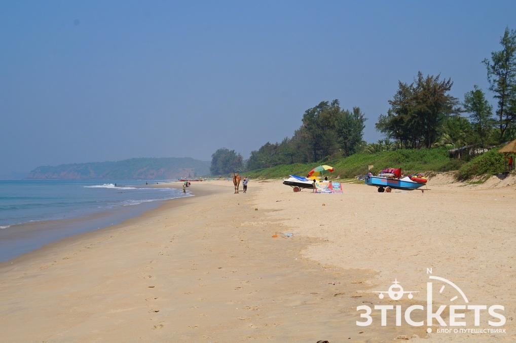 Пляжи Гоа: Парадайз Бич (фото)
