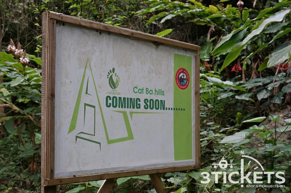 Национальный парк на острове Кат Ба: эко-отель
