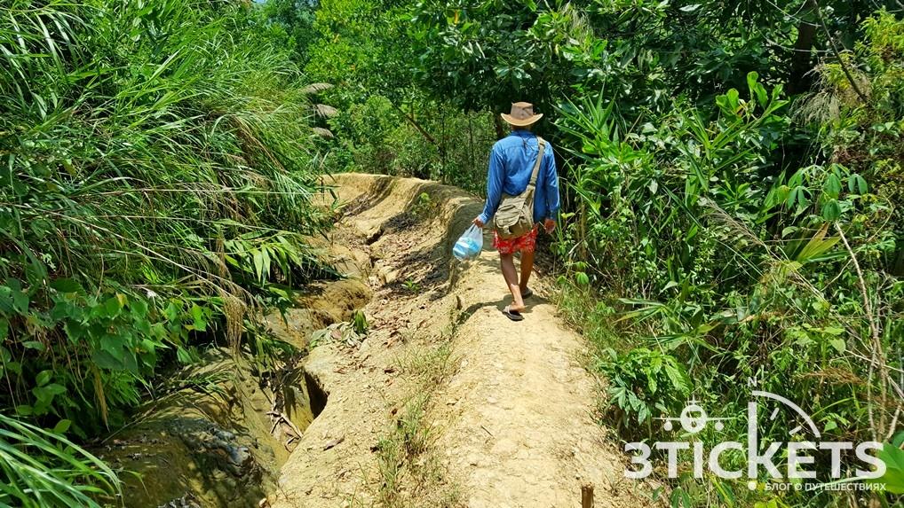 Вьетнамские джунгли