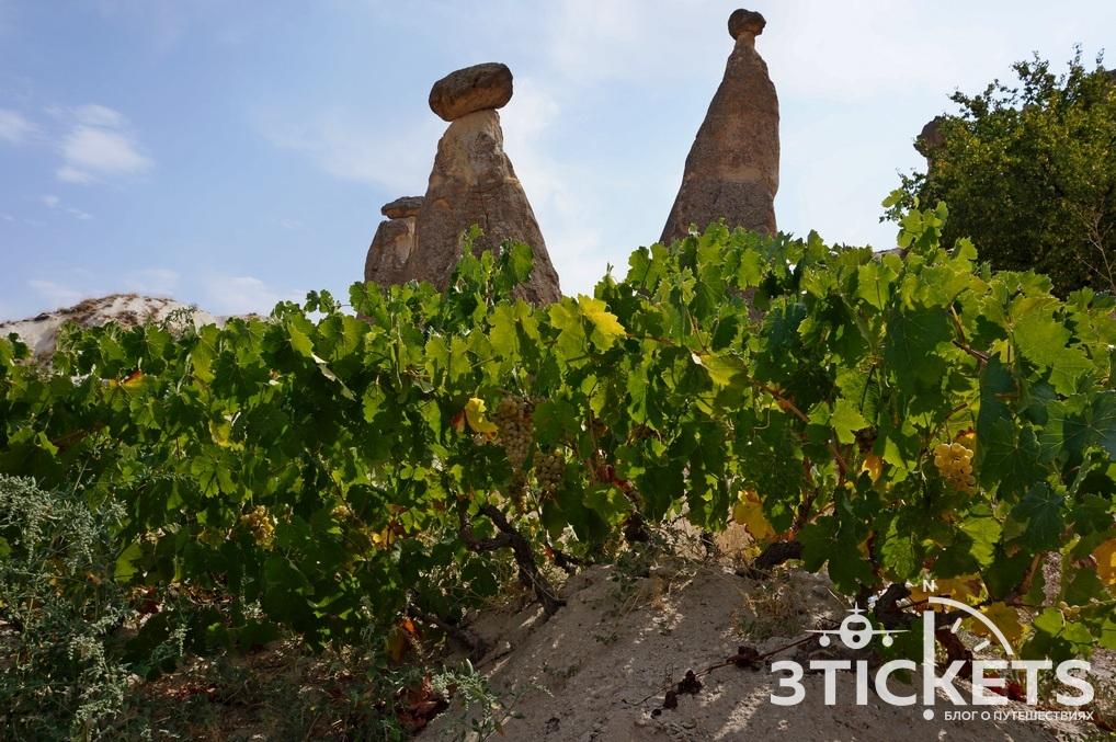Каменные грибы в Каппадоии