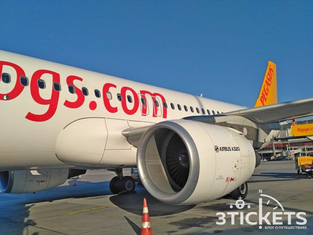 Сколько стоят билеты в Стамбул: авиакомпания Pegasus
