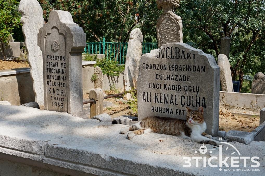 Кладбище Пьер Лоти