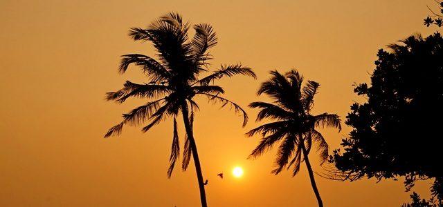 Пляж Колва: полезная информация осамом популярном курорте Южного Гоа