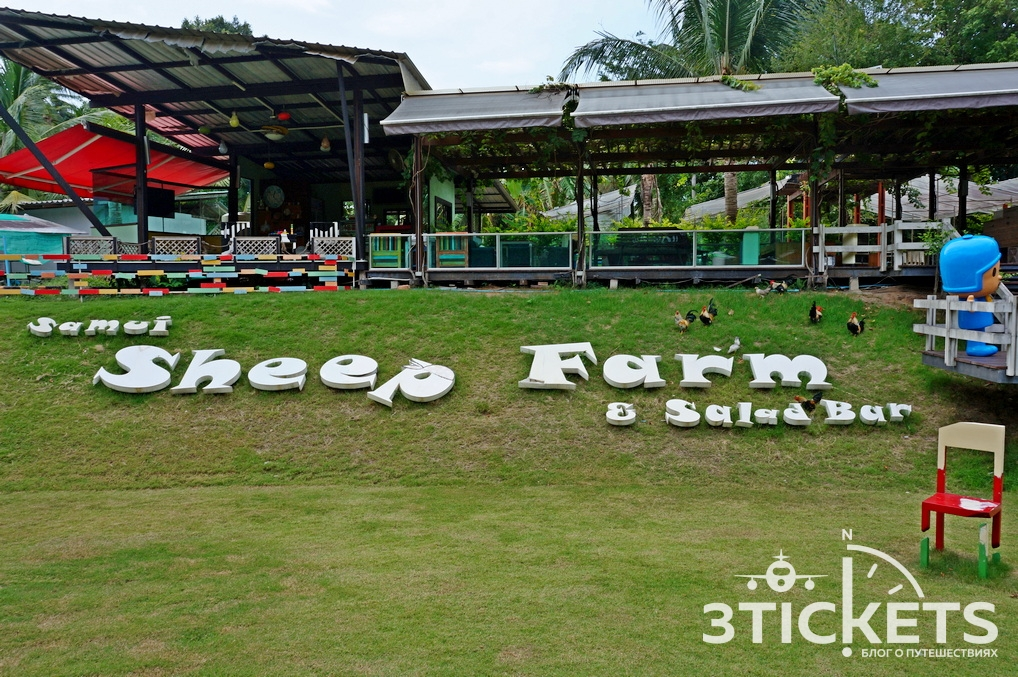 Овечья ферма на Самуи (Sheep Farm Samui)