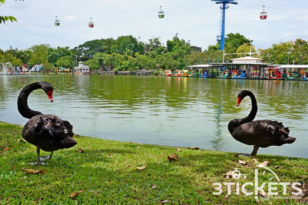 Парк «Дрим Ворлд» в Бангкоке