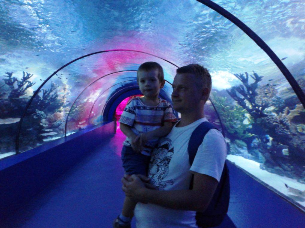 Внутри Анталийского Океанариума