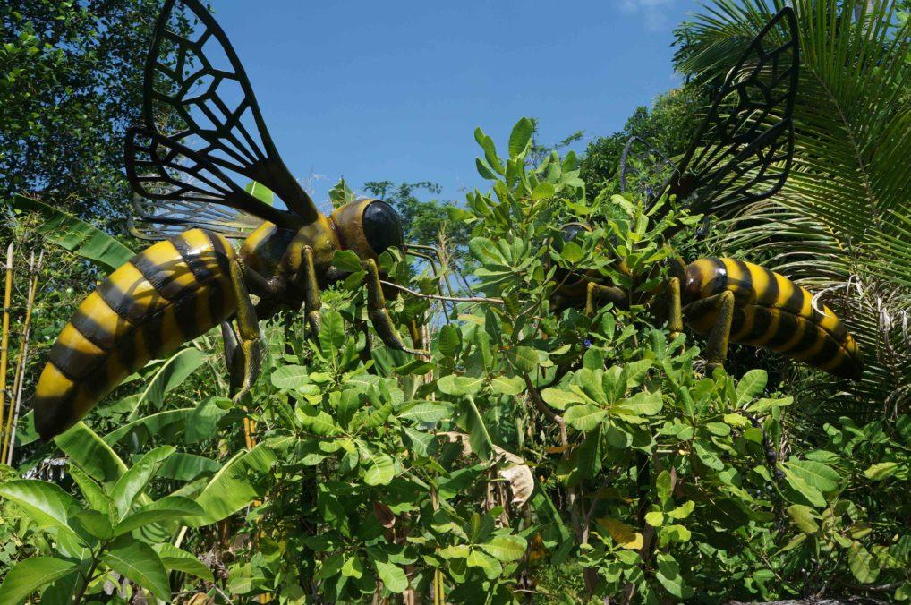 Пчелиная ферма на Пхукете