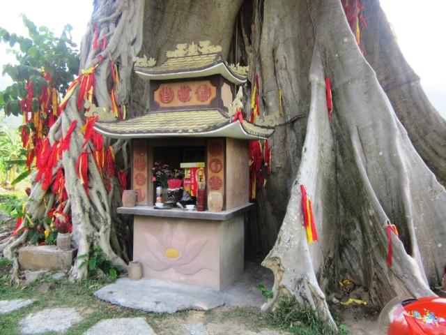 Экопарк Янг Бей, Нячанг, Вьетнам