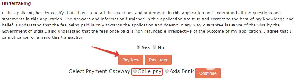 Оплата индийской визы