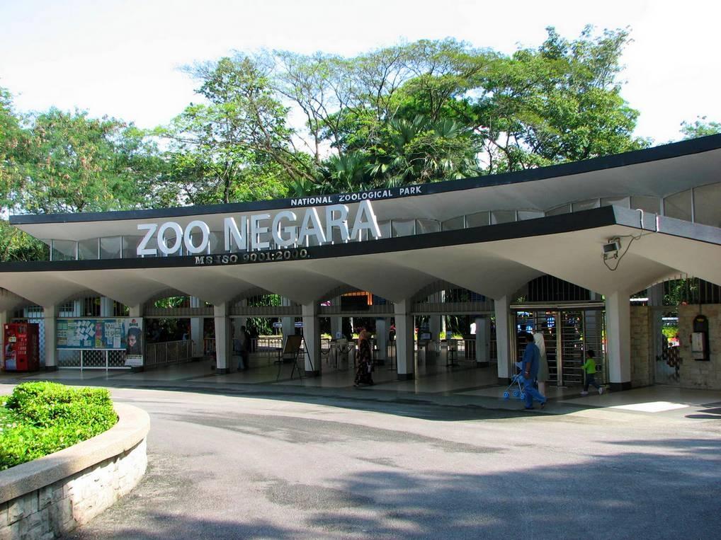 Куала-Лумпур с детьми: зоопарк