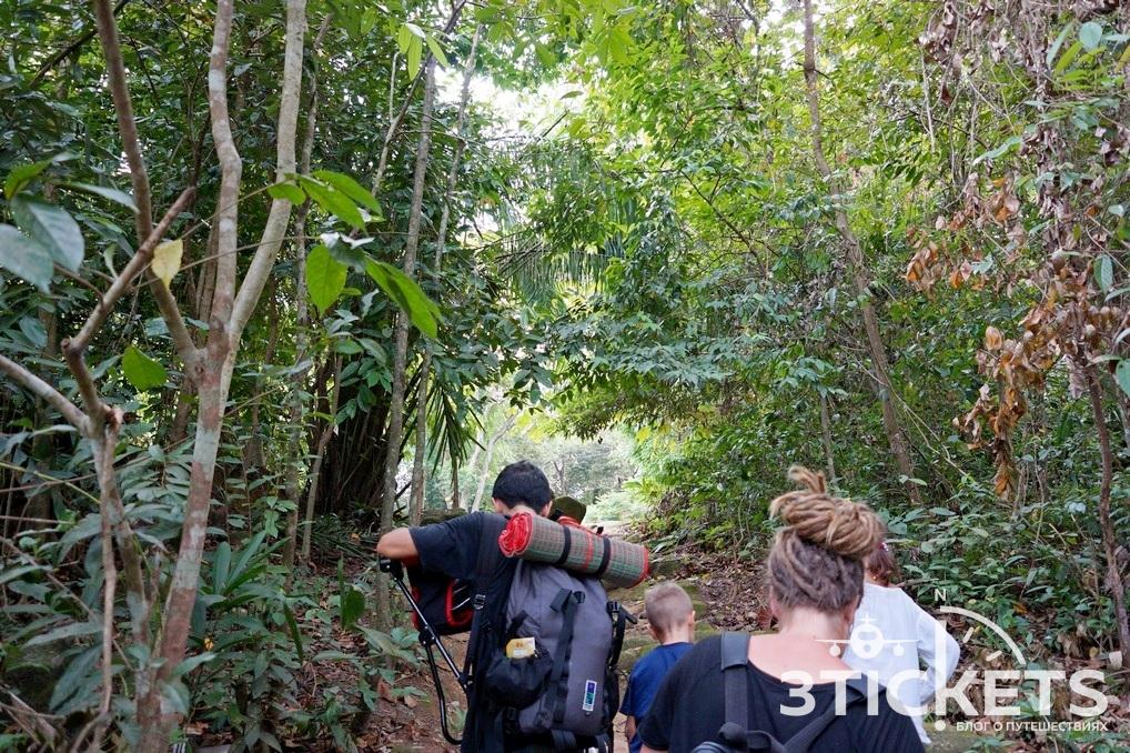 Куда сходить на Пенанге с детьми: парк с бассейнами, варанами и обезьянами