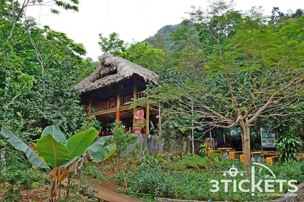 Экскурсия в национальный парк на острове Кат Ба (Вьетнам)
