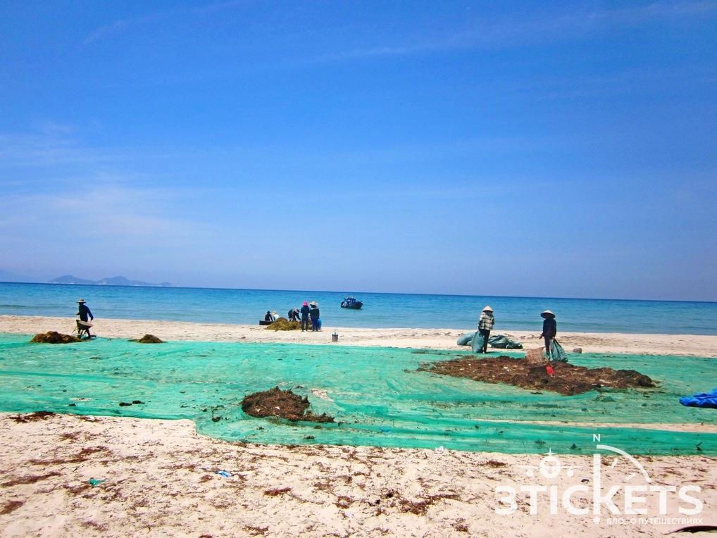 Вьетнамские рыбаки сушат водоросли