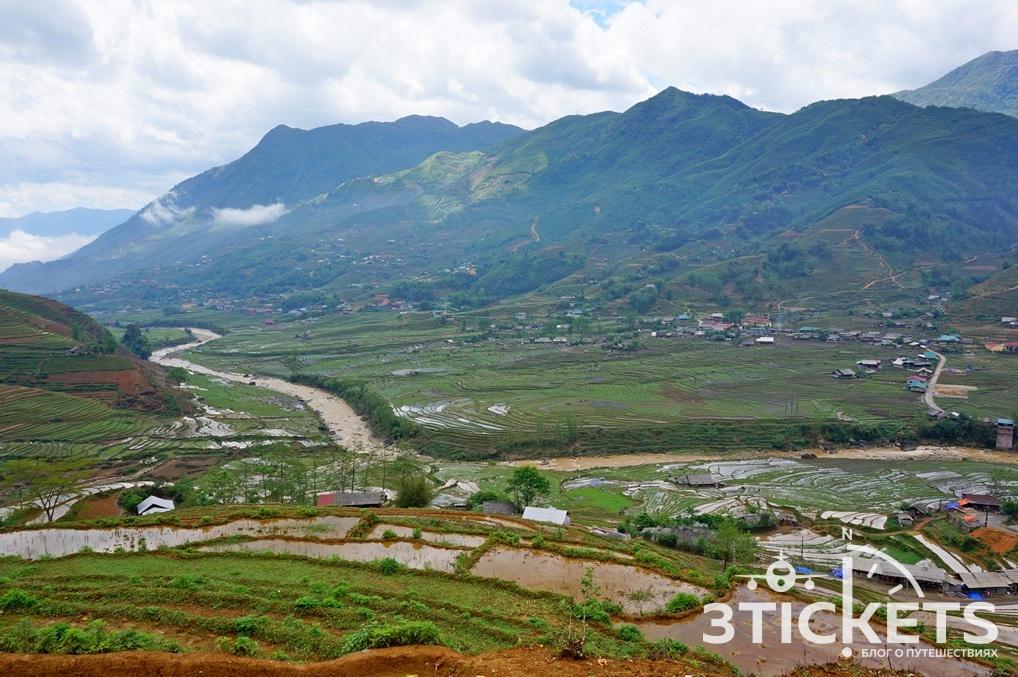 Рисовые поля во Вьетнаме