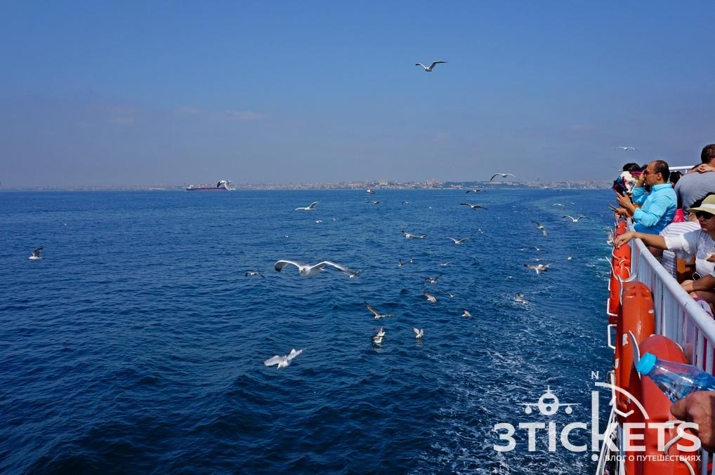 Паром до Принцевых островов из Стамбула