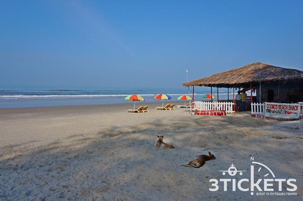 Пляж Варка, Южное Гоа