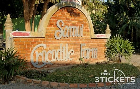 Крокодиловая ферма на Самуи (Samui Crocodile Farm)