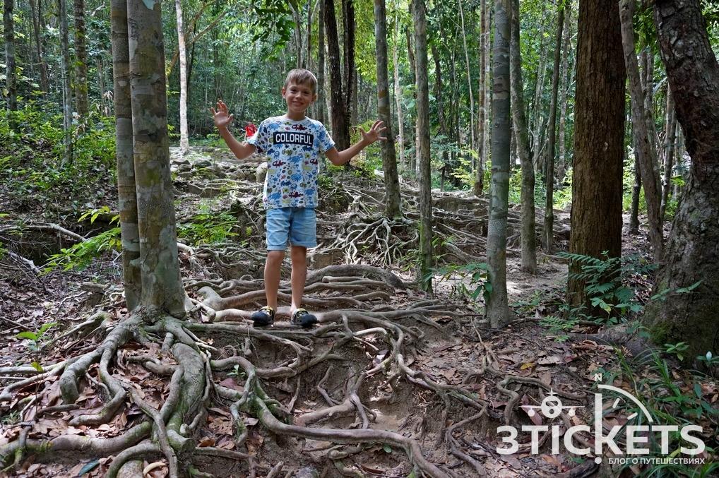 Что посмотреть на Пангане: водопад Паенг и смотровая площадка Dom Sila